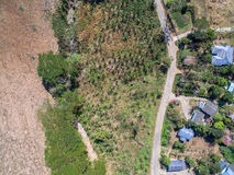 房子、树和路鸟瞰图在农业地区 图库摄影
