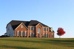 房子唯一结构树 免版税库存照片