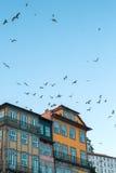 房子大厦在街市老的波尔图 免版税库存图片