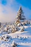 房子山老场面雪冬天 库存照片