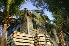 房子棕榈树 库存照片