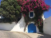 房子的典型的美丽如画的门面在西迪布赛义德,白色和蓝色市,北非,突尼斯 免版税库存照片