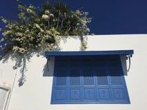 房子的典型的门面在西迪布赛义德,白色和蓝色市 库存图片