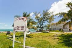 房子的图象在海滩附近的sorrounded与树 免版税库存图片