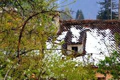房子的屋顶在庭院里 图库摄影