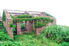 房子种植石头 库存照片