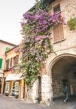房子西尔苗内,意大利门面在西尔苗内的中心有开花的桃红色九重葛的 a的传统夏天门面装饰 库存照片
