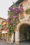 房子西尔苗内,意大利门面在西尔苗内的中心有开花的桃红色九重葛的 a的传统夏天门面装饰 免版税库存照片