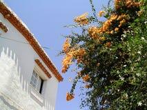 房子西班牙村庄白色 免版税库存照片