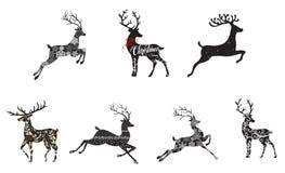 所有所有圣诞节鹿要素例证各自的对象称范围纹理导航 免版税图库摄影