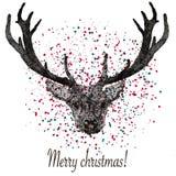 所有所有圣诞节鹿要素例证各自的对象称范围纹理导航 免版税库存照片