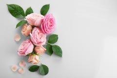 所有所有构成要素花卉例证各自的对象称范围纹理导航 图库摄影