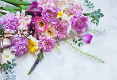 所有所有构成要素花卉例证各自的对象称范围纹理导航 免版税库存照片