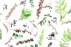所有所有秋天背景要素花卉例证各自的对象称范围纹理导航 库存照片