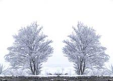 所有所有要素例证各自的对象称范围雪对结构树向量 免版税库存图片