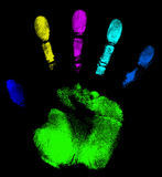 所有树荫光谱 库存例证