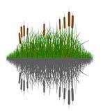 所有背景草反对反映分隔的剪影向量水 向量例证