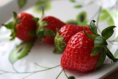 所有草莓 免版税库存图片