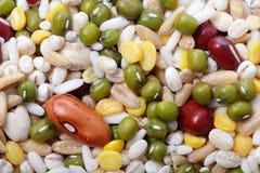 所有豆和豆类混合 免版税库存图片