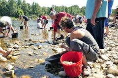 所有年龄的金探油矿者在Gardon河的河岸的 免版税图库摄影