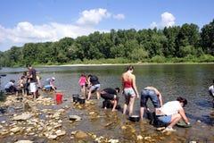 所有年龄的金探油矿者在Gardon河的河岸的 库存图片