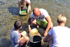 所有年龄的金探油矿者在Gardon河的河岸的 库存照片