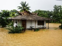 所罗门群岛旋风和洪水 库存图片