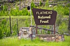 扁平头的国家森林 免版税库存照片