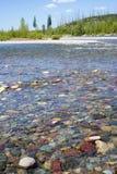 扁平头的河 库存照片