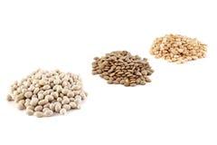 扁豆、扁豆和豌豆 免版税库存照片