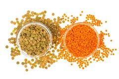 扁豆不同的品种在玻璃的 免版税库存图片