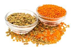 扁豆不同的品种在玻璃的 免版税图库摄影