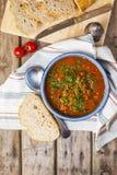 扁豆和蕃茄汤 库存照片