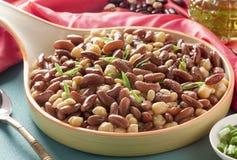 扁豆和鸡豆沙拉 库存图片
