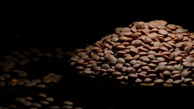 扁豆回旋在黑背景的豆类菜 股票视频