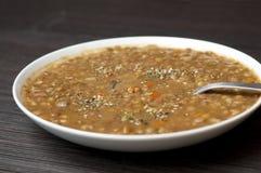 扁豆固体汤 免版税库存图片
