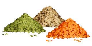 扁豆堆的各种各样的类型被设置的 免版税库存照片