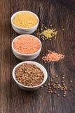 扁豆是高蛋白亚洲和欧洲盘的依据 免版税库存图片
