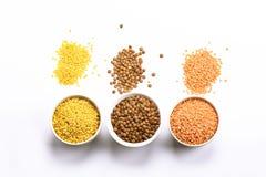 扁豆是高蛋白亚洲和欧洲盘的依据 库存照片