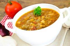 扁豆汤用茄子、蕃茄和葱 免版税图库摄影