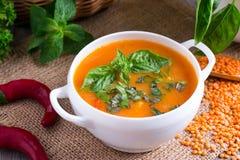 扁豆汤用蕃茄和葱 图库摄影