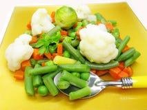 扁豆沙拉蔬菜 库存图片