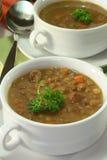 扁豆炖煮的食物 免版税库存图片