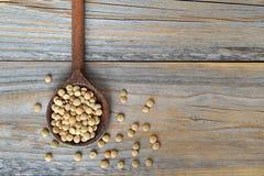 扁豆豆 库存图片