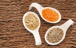 扁豆-透镜culinaris的类型 免版税图库摄影
