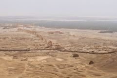 扇叶树头榈古城的废墟 库存图片