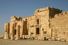 扇叶树头榈,寺庙废墟巴尔(贝耳) 库存图片