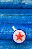 扇贝颜色杯子蓝色桌 库存照片