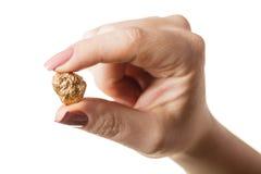 手中的块金 免版税库存图片
