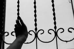 手举行窗户栏 库存照片